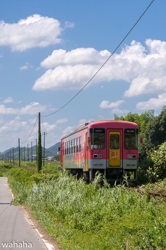 290806houjou-2.jpg