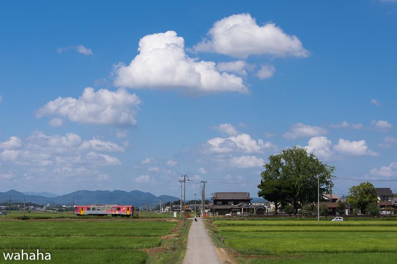 290806houjou-3.jpg