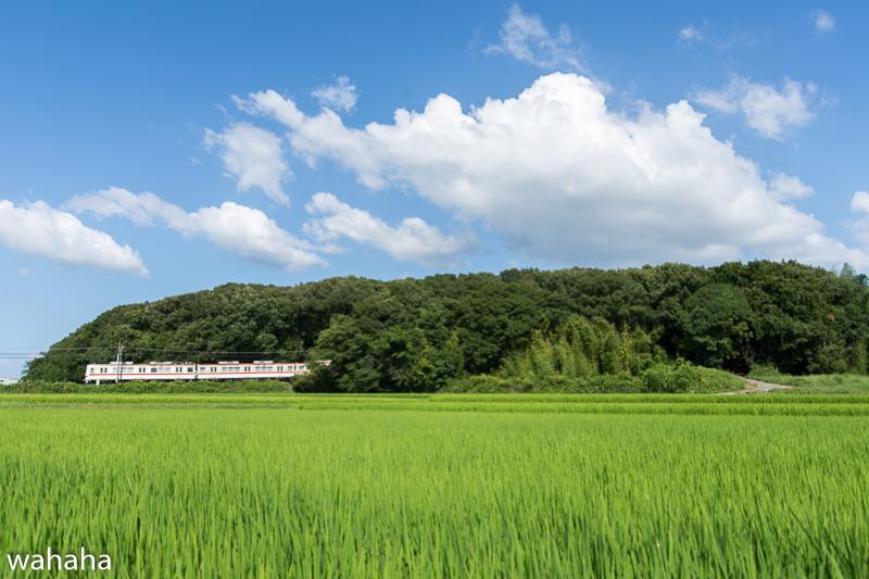 290806sontetsu_ichibaono-2.jpg