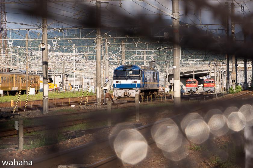 290812hirosima-01.jpg