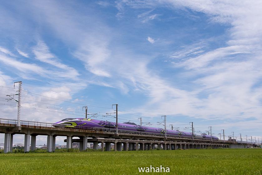 290814kanagasaki-6.jpg
