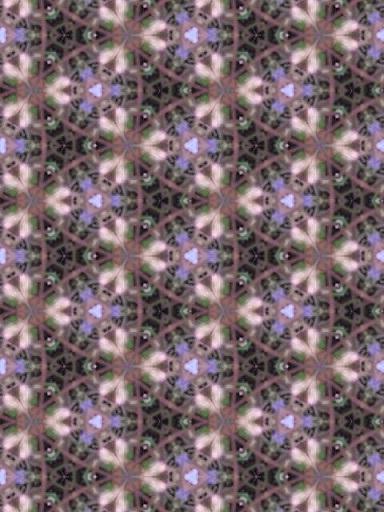 170521_164422_ed.jpg