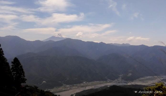 奥の院からの富士川
