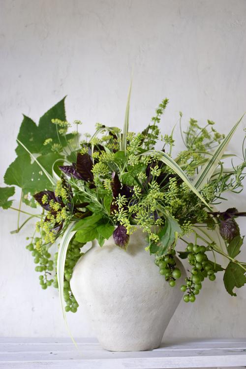 Herbs_17_8_19_1.jpg