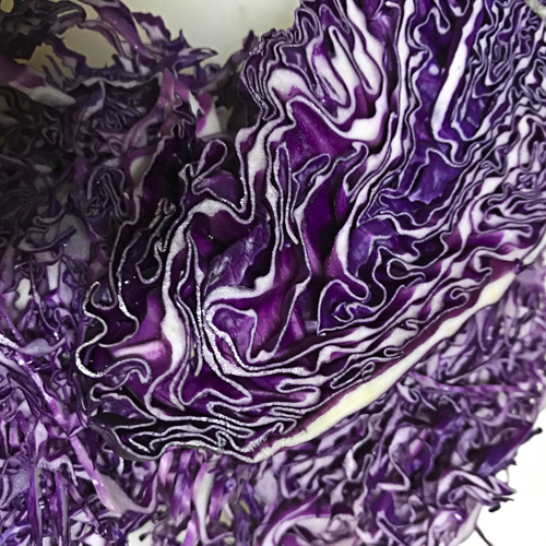 purple_cabbage_17_7_12_2.jpg