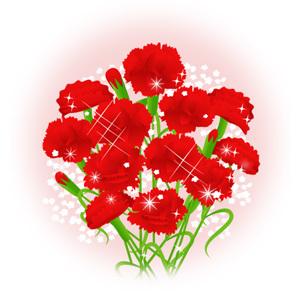 carnation04.jpg