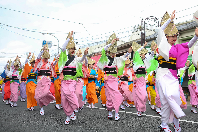 葛飾菖蒲祭り.jpg