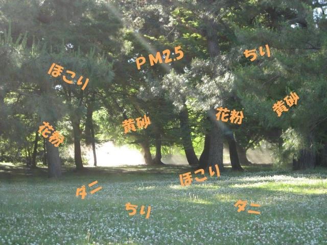 170616御所さんぽ③草刈り中