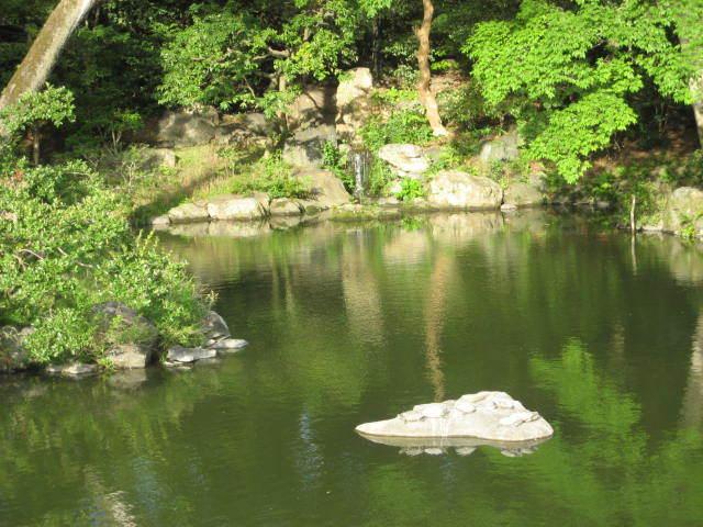 170611御所さんぽ⑤九条池