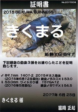 YG891証明書53mm