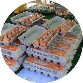 1ダース入りの卵