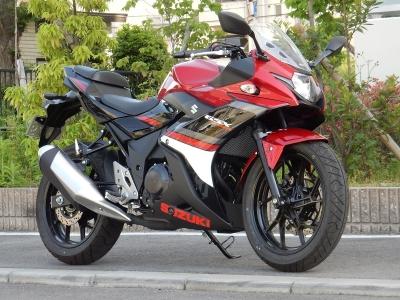 GSX250R (10)
