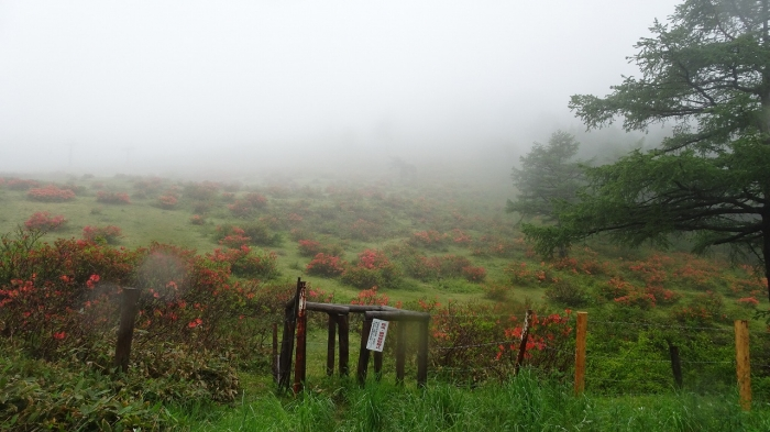 草津温泉と伊香保 (1)