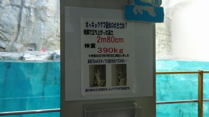 男鹿水族館とゴジラ岩 (8)
