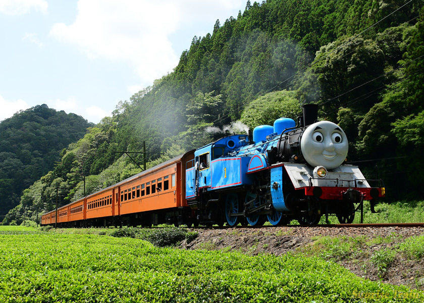 トーマス 大井川鉄道