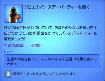 simss-0002.jpg