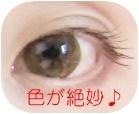 1IMG_0091.jpg