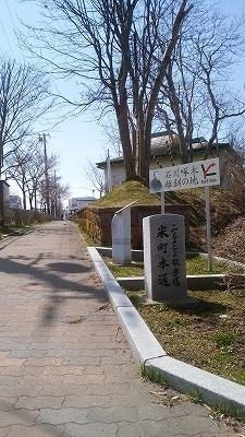 ふるさと散歩道米町本道5月