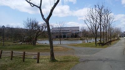 鶴ケ岱公園5月