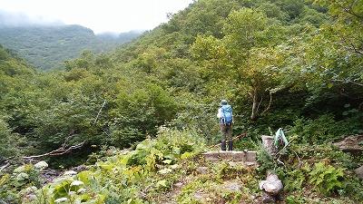 斜里岳8月旧道2