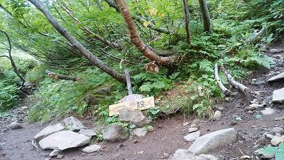 斜里岳8月旧道下二股登り