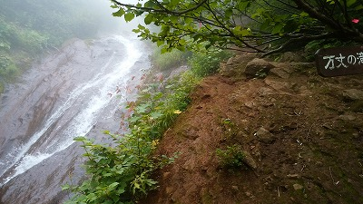 斜里岳8月旧道万丈の滝