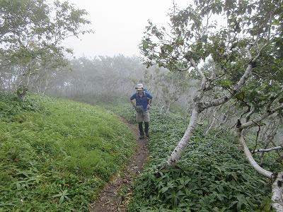 西別岳登山道2