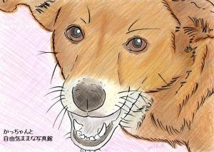 irasuto-ra02.jpg