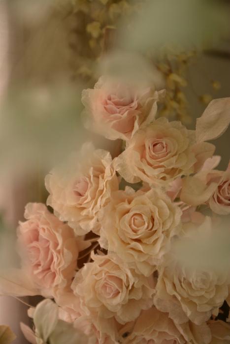 ブログアトリエの花5