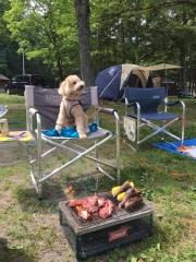 日帰りキャンプ