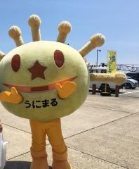 奥尻ムーンライトマラソン4