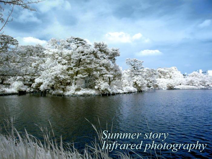 赤外線写真:洗足池