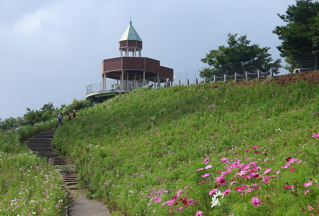 翠波高原3