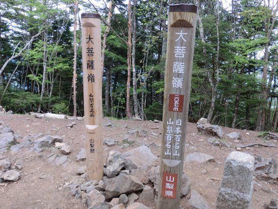 大菩薩嶺 (14)リサイズ