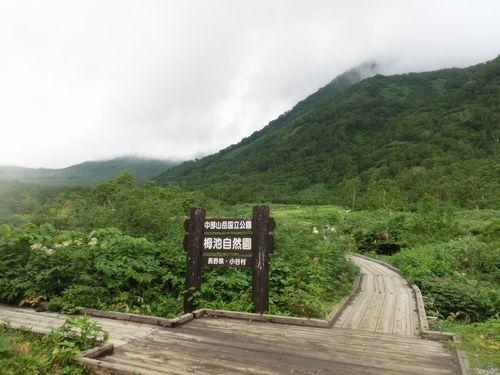栂池自然園 (4)