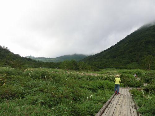 栂池自然園 (5)