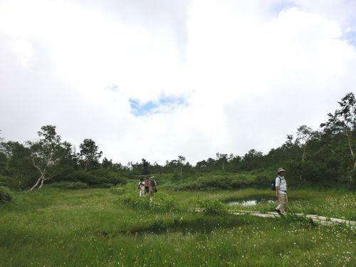 栂池自然園 (15)