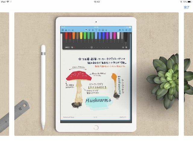 app_013.jpg
