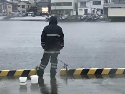 雨の中のサビキ釣り