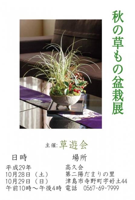 00-草もの盆栽展-1