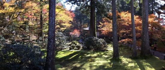 00-20171110-01 panorama 三千院庭園