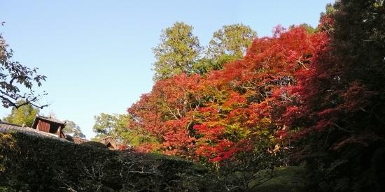 0-20171110-3 panorama 詩仙堂庭園