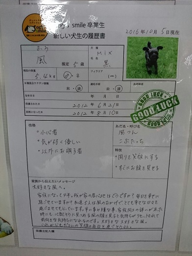 DSC_2229_20171027125754ff1.jpg
