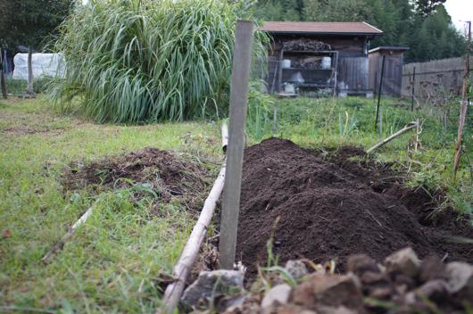 房総フィールド ブロッコリーと芽キャベツの畑開墾