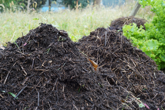 半年間熟成させた雑草多肥