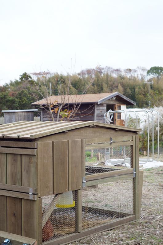 チキントラクターと小屋