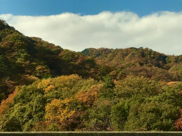 紅葉の軽井沢 2013