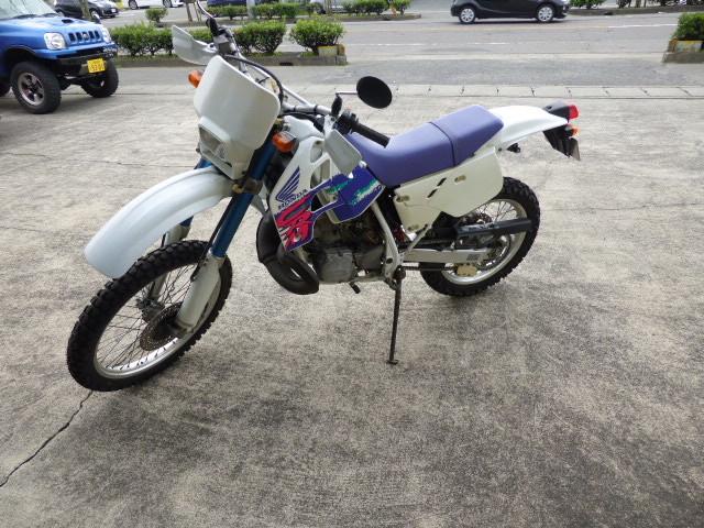 P1040200.jpg