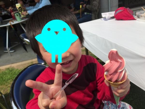 大和路へぐり(くまがしステーション) いちごソフトクリーム (1)