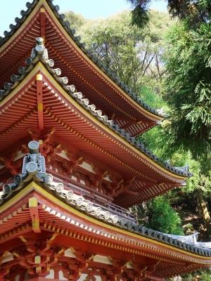 松尾寺・三重塔2